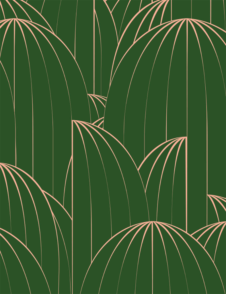 Custom cactus wallpaper for The Deco