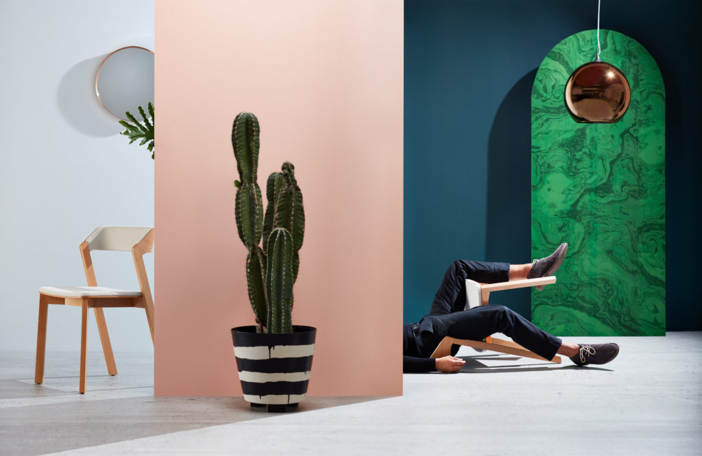 Artistic shot of chairs with man and cactus